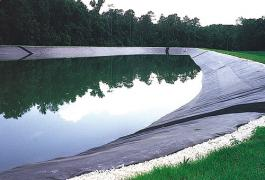 Film, coating, liner, geomembrane, membrane